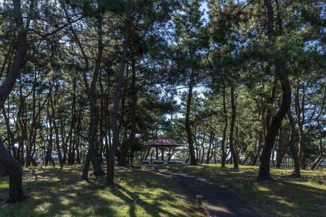 望海浜公園